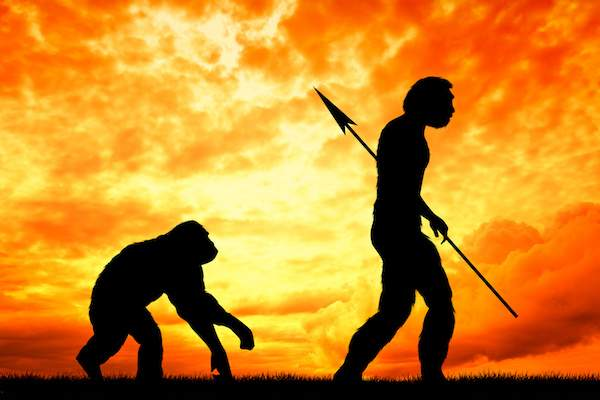 達爾文,進化論,演化論,創造論,天擇論,物競天擇,適者生存,遺傳學,基因學